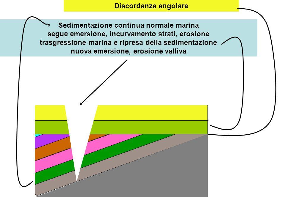 Discordanza angolare Sedimentazione continua normale marina segue emersione, incurvamento strati, erosione trasgressione marina e ripresa della sedime