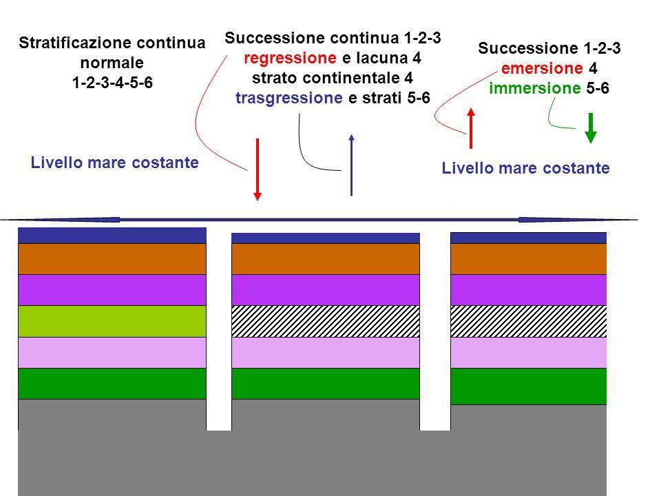 Stratificazione continua normale 1-2-3-4-5-6 Successione continua 1-2-3 regressione e lacuna 4 strato continentale 4 trasgressione e strati 5-6 Succes