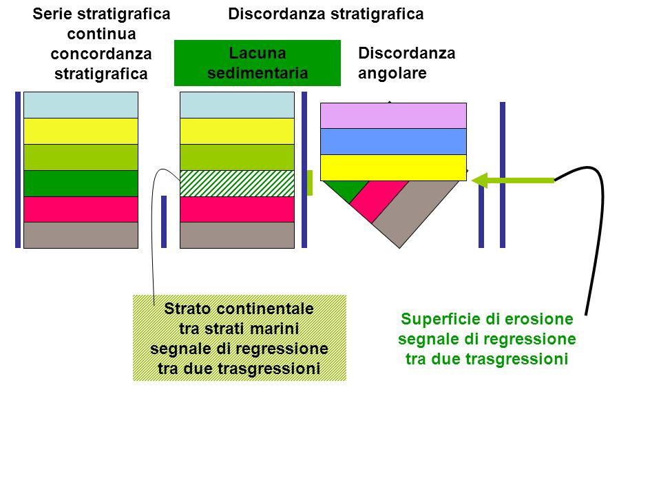 Serie stratigrafica continua concordanza stratigrafica Discordanza stratigrafica Lacuna sedimentaria Discordanza angolare Strato continentale tra stra