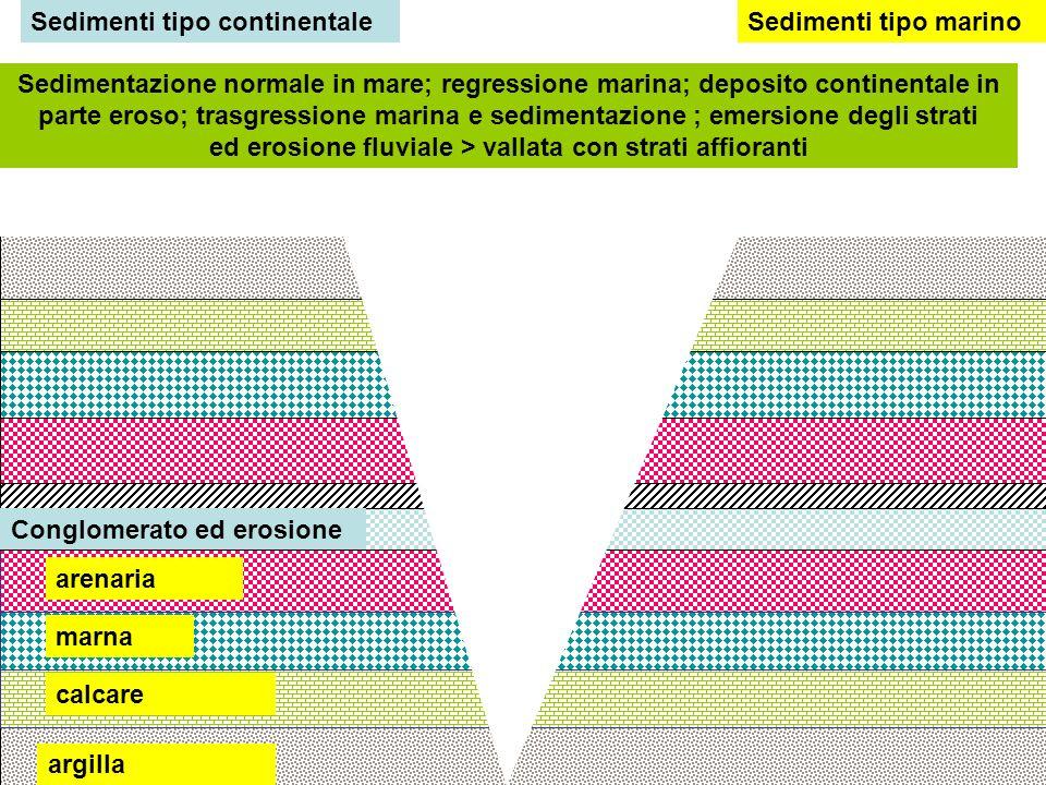 Successione di strati continua in ambiente marino, emersione ed erosione valliva Successione di strati in ambiente marino: emersione e sedimentazione continentale; lacuna stratigrafica; trasgressione e sedimentazione tipo marino Discordanza stratigrafica con lacuna