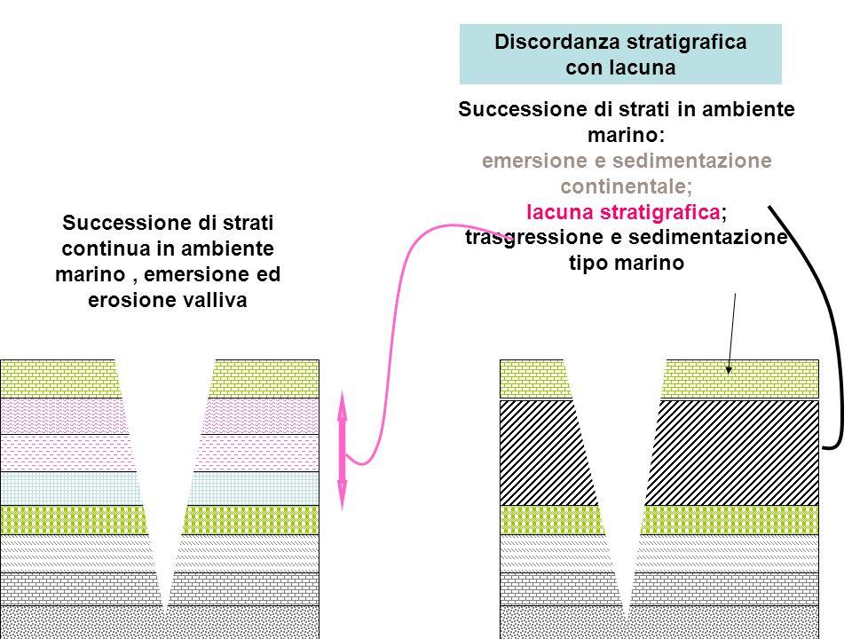 Sedimentazione continua stratificazione normale emersione ed erosione valliva Sedimentazione marina continua per 4 strati; regressione e deposito strato continentale;lacuna per 3 strati; trasgressione marina e deposito strato emersione ed erosione