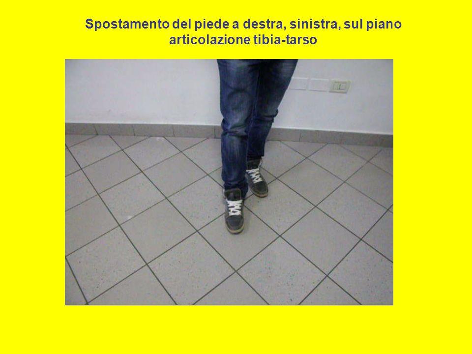 Spostamento del piede a destra, sinistra, sul piano articolazione tibia-tarso