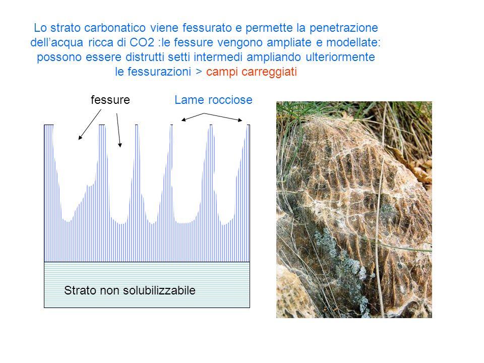 Strato non solubilizzabile Strato carbonatico Lo strato carbonatico viene fessurato e permette la penetrazione dellacqua ricca di CO2 :le fessure veng