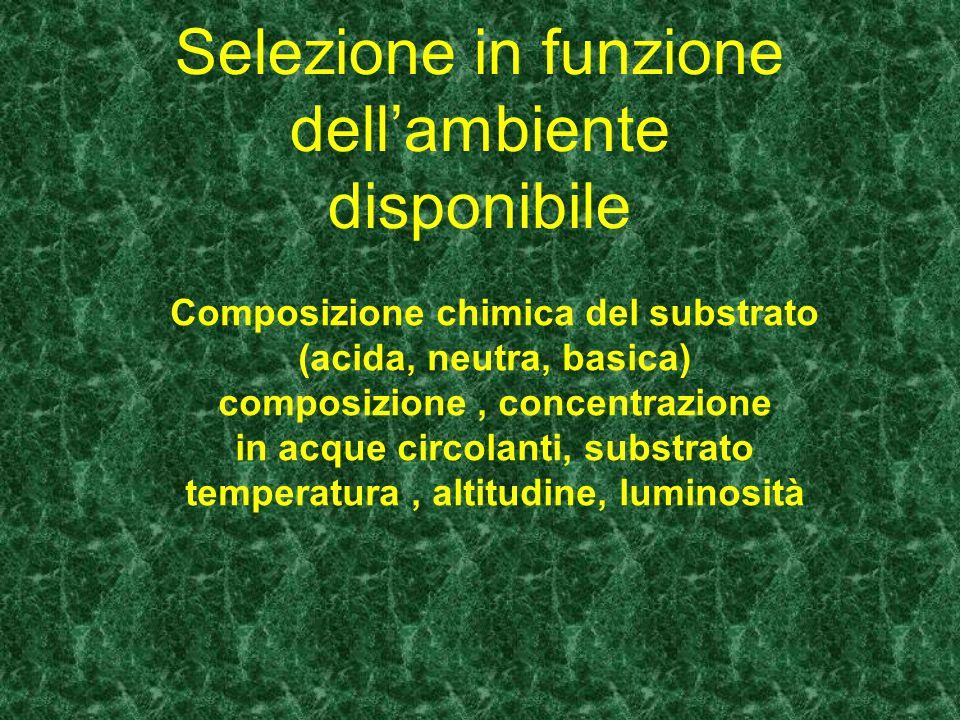 Selezione in funzione dellambiente disponibile Composizione chimica del substrato (acida, neutra, basica) composizione, concentrazione in acque circol