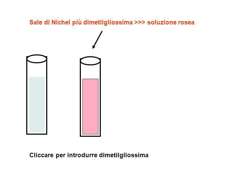 Soluzione con nichel Soluzione nichel + dimetilgliossima