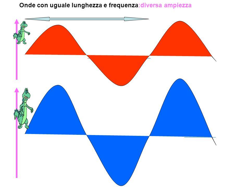 Onde con uguale ampiezza:diversa lunghezza e frequenza