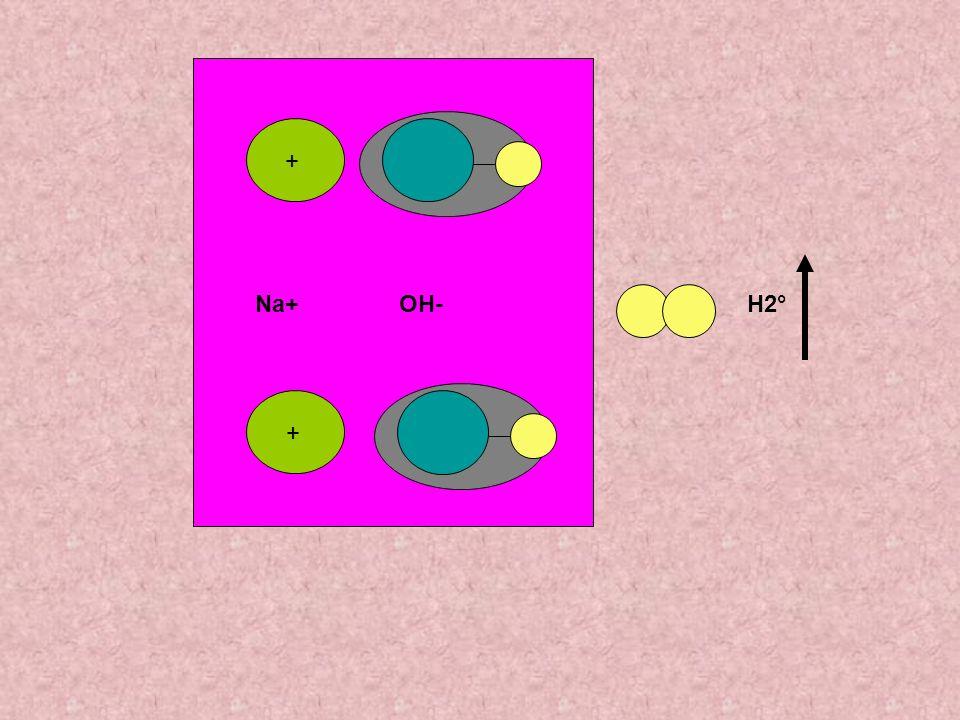 + + K+OH- Introducendo potassio invece di sodio avviene una reazione simile, ma lidrogeno liberato reagisce con ossigeno dellaria formando H2O e liberando energia (fiammella mobile…) H2O H2°O°