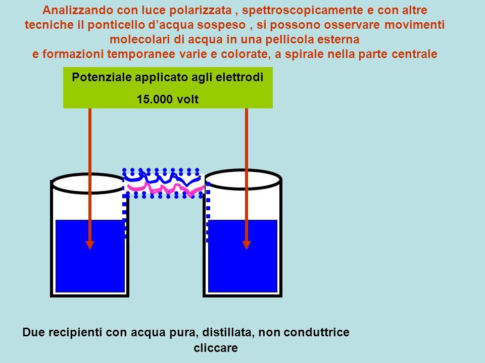 Potenziale applicato agli elettrodi 15.000 volt Due recipienti con acqua pura, distillata, non conduttrice cliccare Analizzando con luce polarizzata,