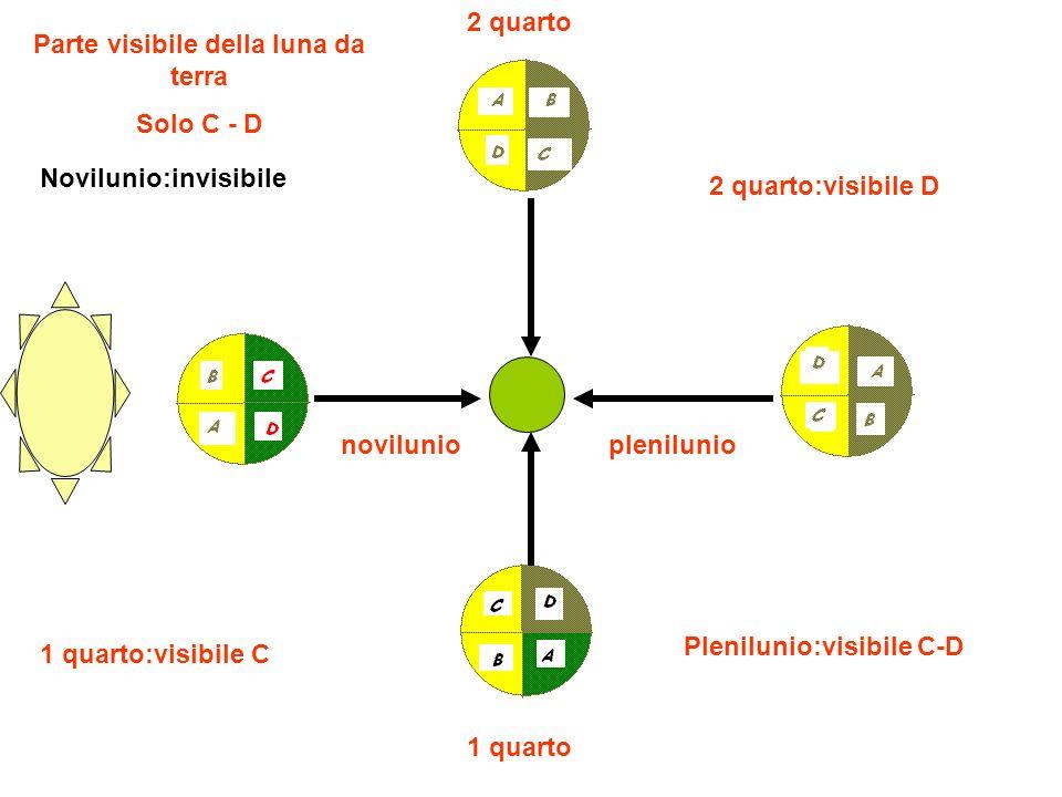 novilunio Novilunio:invisibile 1 quarto 1 quarto:visibile C plenilunio Plenilunio:visibile C-D 2 quarto 2 quarto:visibile D Parte visibile della luna