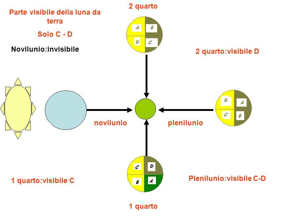 novilunio Novilunio:invisibile 1 quarto 1 quarto:visibile C plenilunio Plenilunio:visibile C-D 2 quarto 2 quarto:visibile D Parte visibile della luna da terra Solo C - D