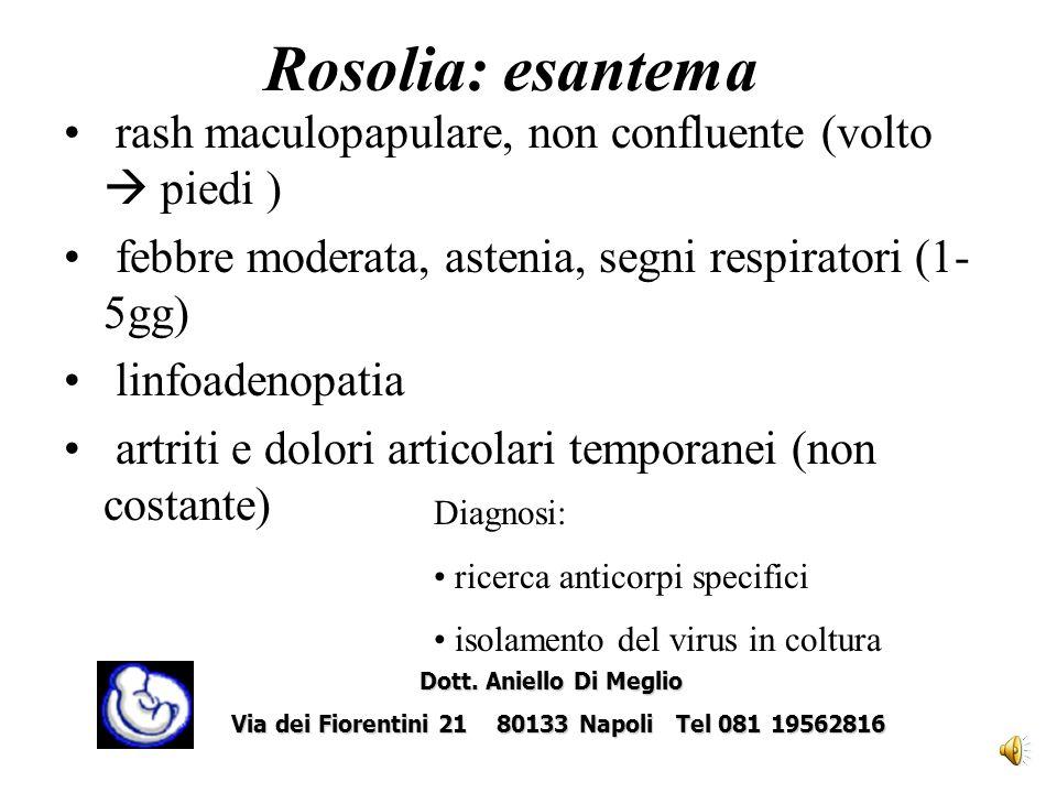 Rosolia: caratteristiche Esantema febbrile benignoEsantema febbrile benigno Virus a RNA, membro della famiglia dei togavirusVirus a RNA, membro della famiglia dei togavirus Diffusione attraverso goccioline respiratorieDiffusione attraverso goccioline respiratorie Nellera prevaccinica l80% delle donne erano infettate in età fecondaNellera prevaccinica l80% delle donne erano infettate in età feconda Picco dincidenza tra 5-14 anniPicco dincidenza tra 5-14 anni Linfezione conferisce una immunità permanenteLinfezione conferisce una immunità permanente Dott.