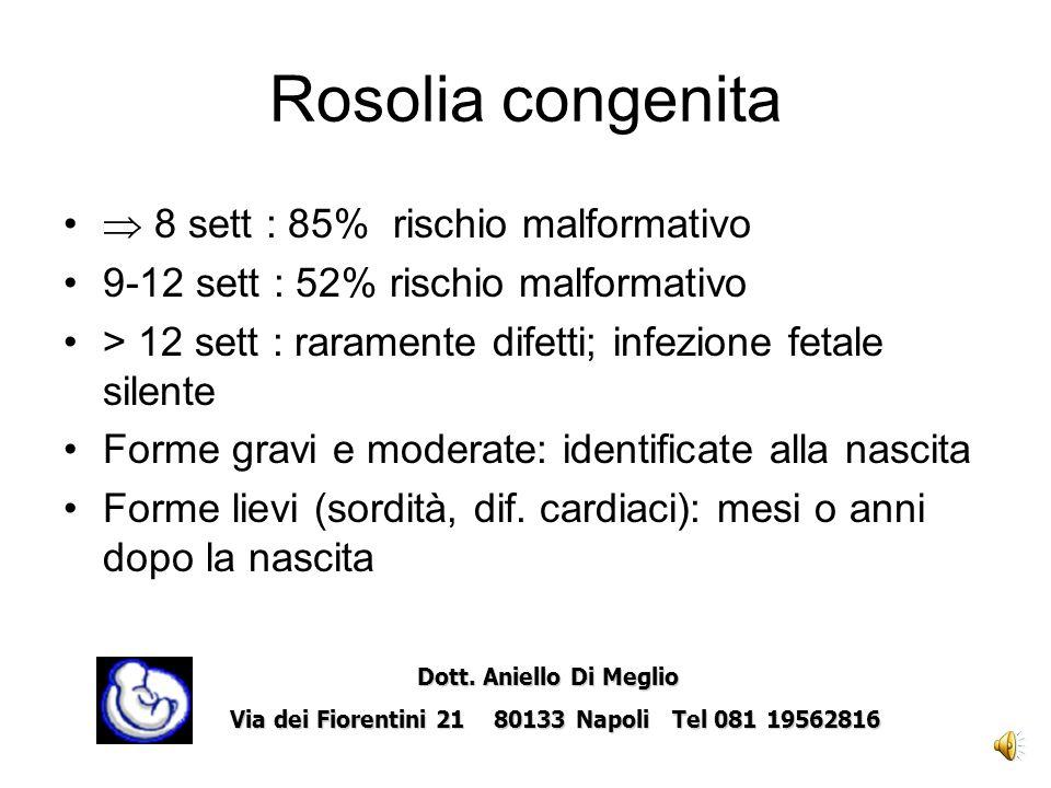 Entro 12 giorni dall UM linfezione fetale è virtualmente inesistente; 12 e 21 giorni il rischio è del 31% aumenta al 100% se compare tra 3 e 6 w dopo lultima mestruazione Enders G, Lancet 1988 Rosolia: management in gravidanza Rush materno Dott.