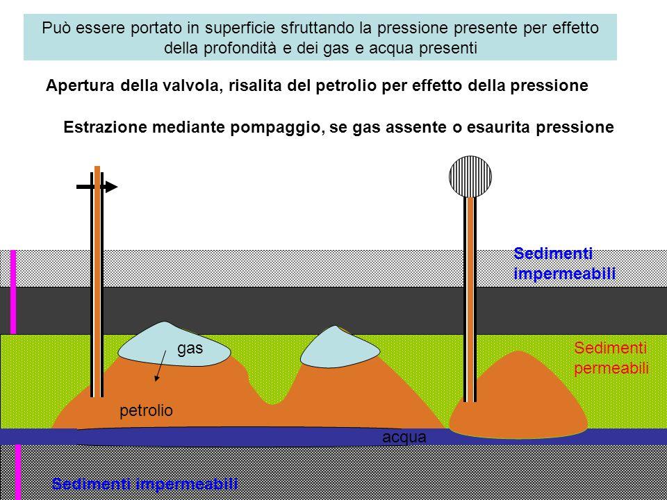 Sedimenti impermeabili Sedimenti permeabili petrolio gas acqua Può essere portato in superficie sfruttando la pressione presente per effetto della pro