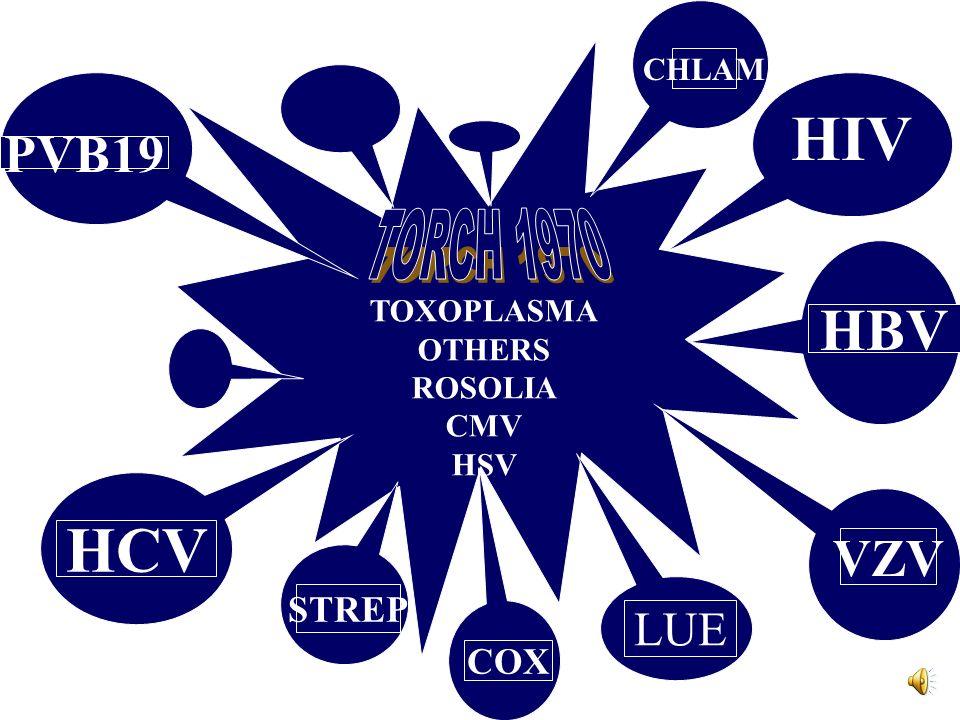 TOXOPLASMA OTHERS ROSOLIA CMV HSV HIV PVB19 HCV HBV VZV LUE STREP CHLAM COX