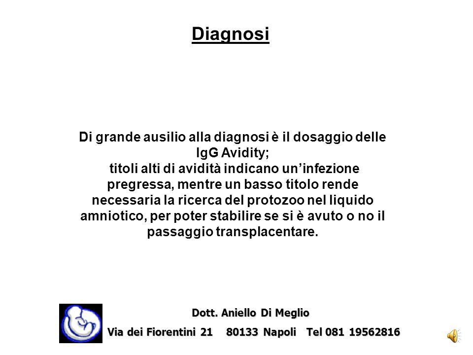 La diagnosi materna di toxoplasmosi si basa fondamentalmente su dati sierologici ( IgG, IgM, IgA antitoxoplasma, IgG Avidity) e su prove biologiche e