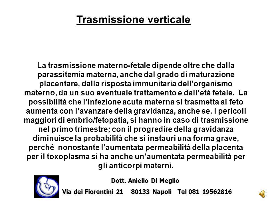 Il feto contrae tale infezione attraverso il passaggio transplacentare del protozoo durante la parassitemia che si verifica nella fase acuta o durante