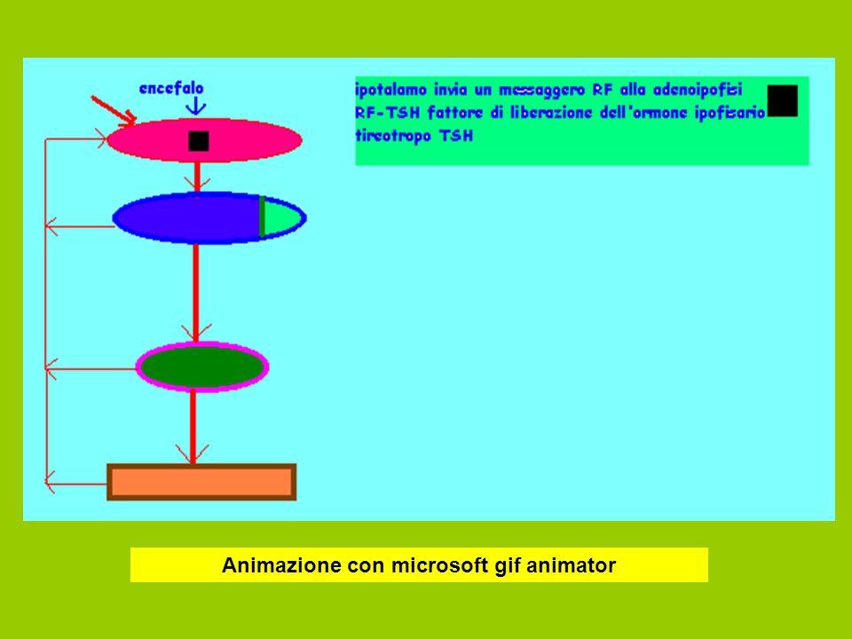 Animazione con microsoft gif animator