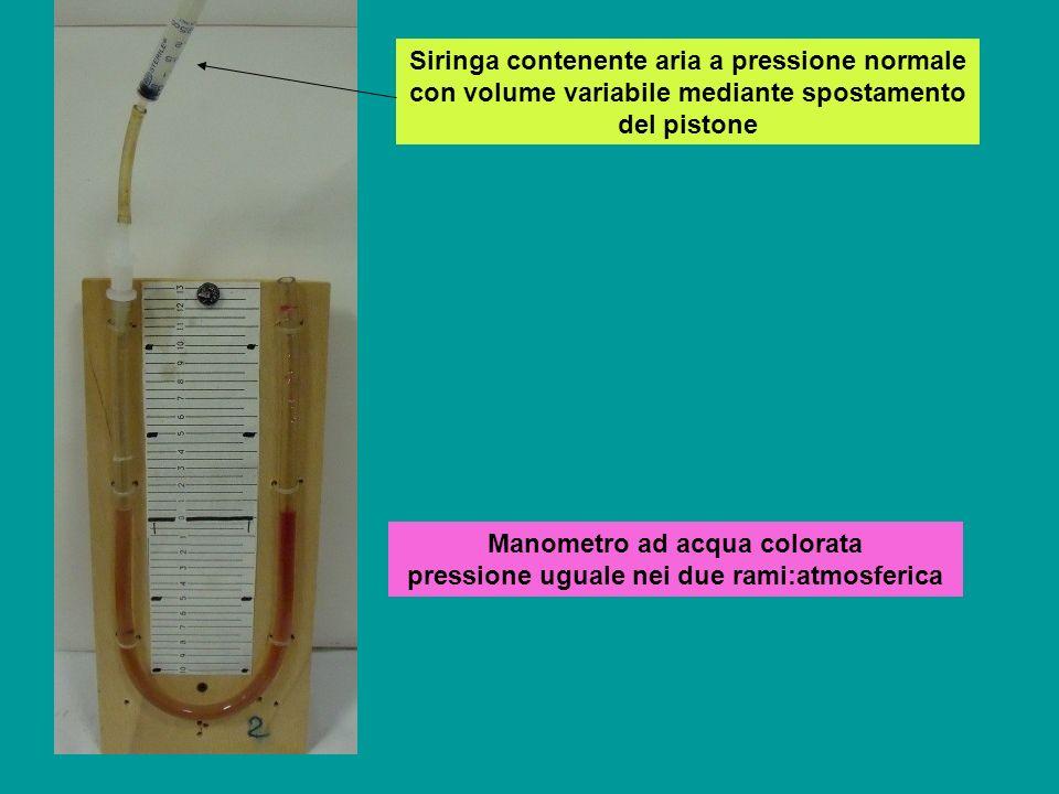 Siringa con aria a pressione normale chiusa ad una estremità pistone mobile per variare il volume a disposizione applicando forze variabili Pistone mobileSiringa chiusa