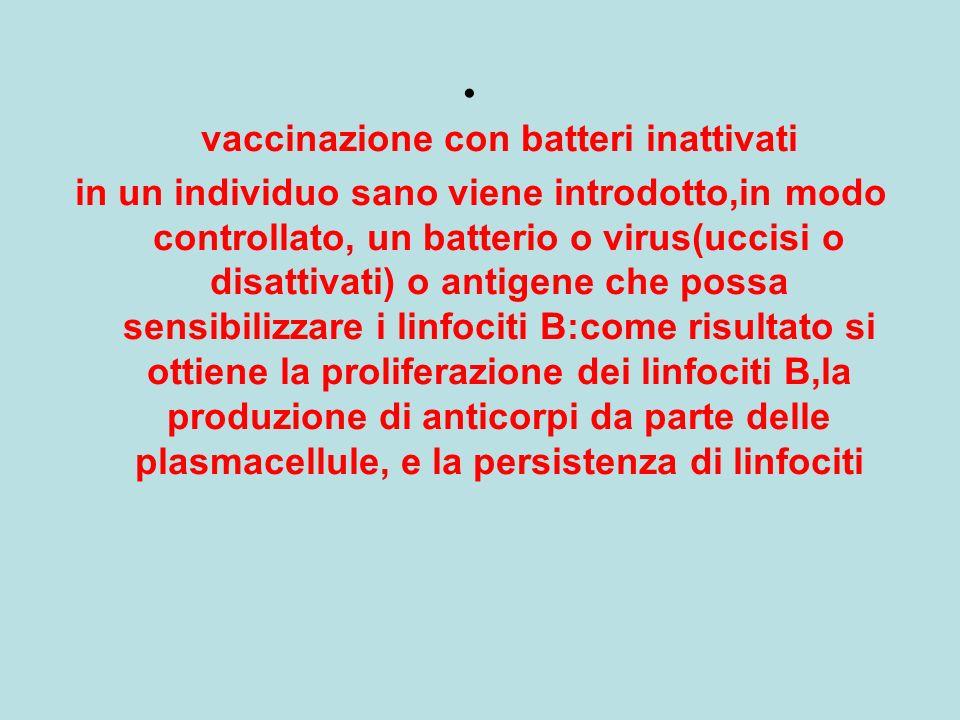 vaccinazione con batteri inattivati in un individuo sano viene introdotto,in modo controllato, un batterio o virus(uccisi o disattivati) o antigene ch