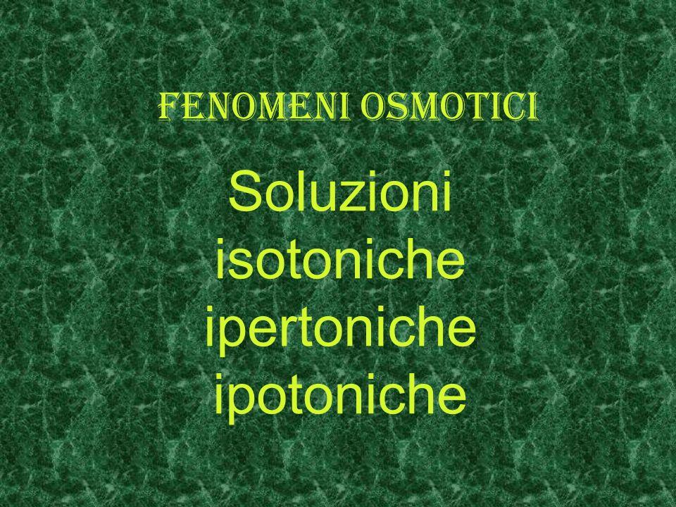 Fenomeni osmotici Soluzioni isotoniche ipertoniche ipotoniche