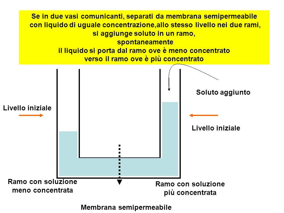 Se in due vasi comunicanti, separati da membrana semipermeabile con liquido di uguale concentrazione,allo stesso livello nei due rami, si aggiunge sol
