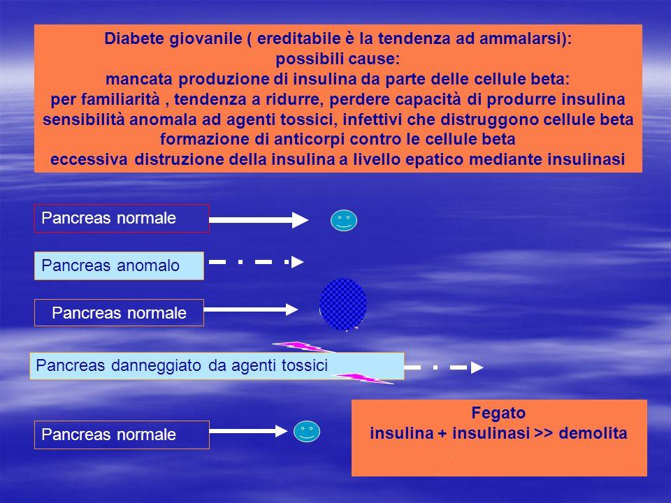 Diabete giovanile ( ereditabile è la tendenza ad ammalarsi): possibili cause: mancata produzione di insulina da parte delle cellule beta: per familiar