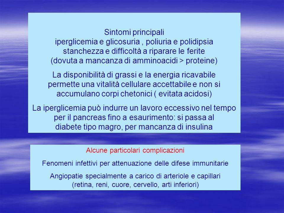 Sintomi principali iperglicemia e glicosuria, poliuria e polidipsia stanchezza e difficoltà a riparare le ferite (dovuta a mancanza di amminoacidi > p