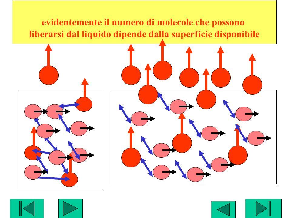 evidentemente il numero di molecole che possono liberarsi dal liquido dipende dalla superficie disponibile