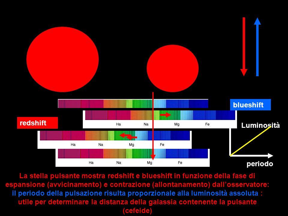 La stella pulsante mostra redshift e blueshift in funzione della fase di espansione (avvicinamento) e contrazione (allontanamento) dallosservatore: il