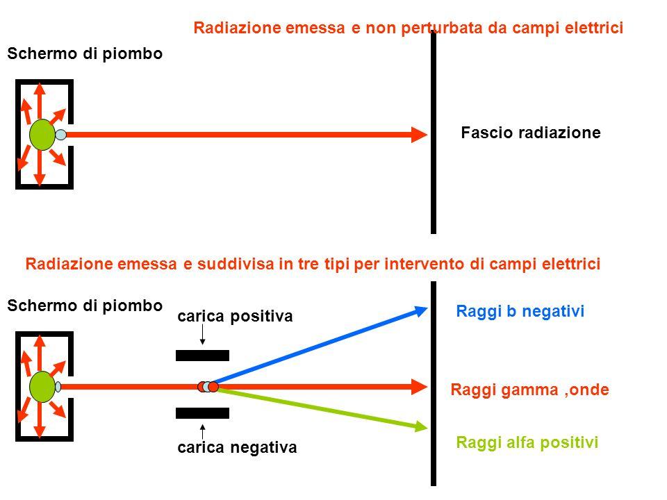 Schermo di piombo Raggi b negativi Raggi alfa positivi Raggi gamma,onde Fascio radiazione carica positiva carica negativa Radiazione emessa e non perturbata da campi elettrici Con schermo di una sostanza (es,piombo) tutte le radiazioni vengono bloccate
