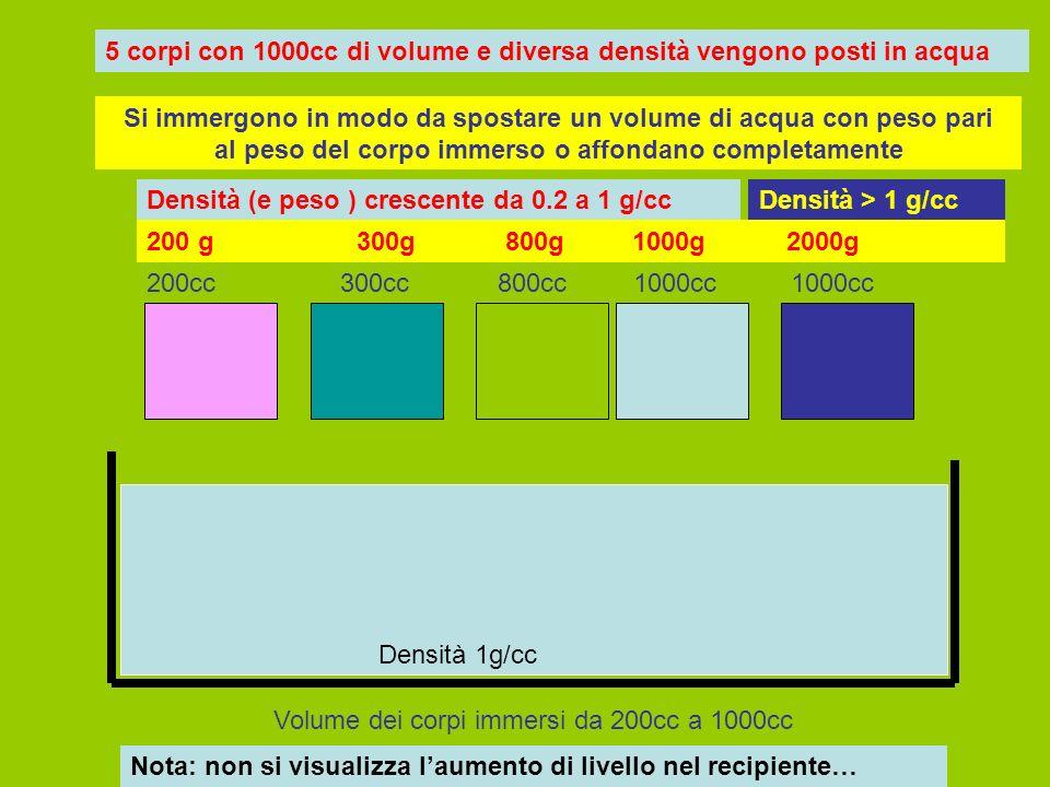 5 corpi con 1000cc di volume e diversa densità vengono posti in acqua Densità (e peso ) crescente da 0.2 a 1 g/ccDensità > 1 g/cc Si immergono in modo