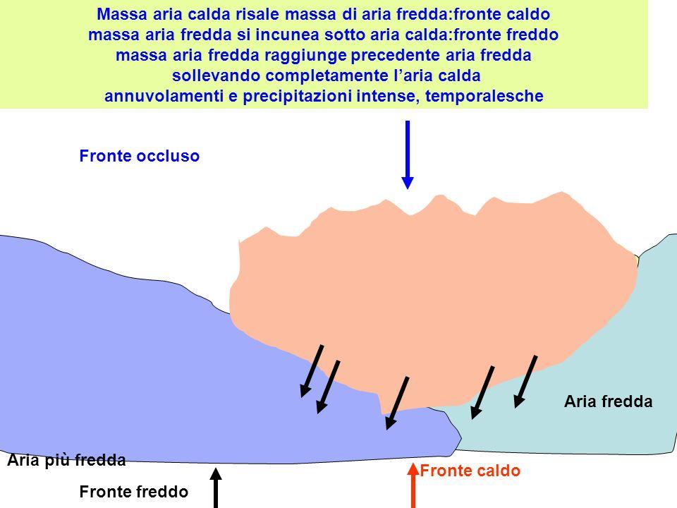 Aria fredda Fronte caldo Fronte freddo Fronte occluso Massa aria calda risale massa di aria fredda:fronte caldo massa aria fredda si incunea sotto ari