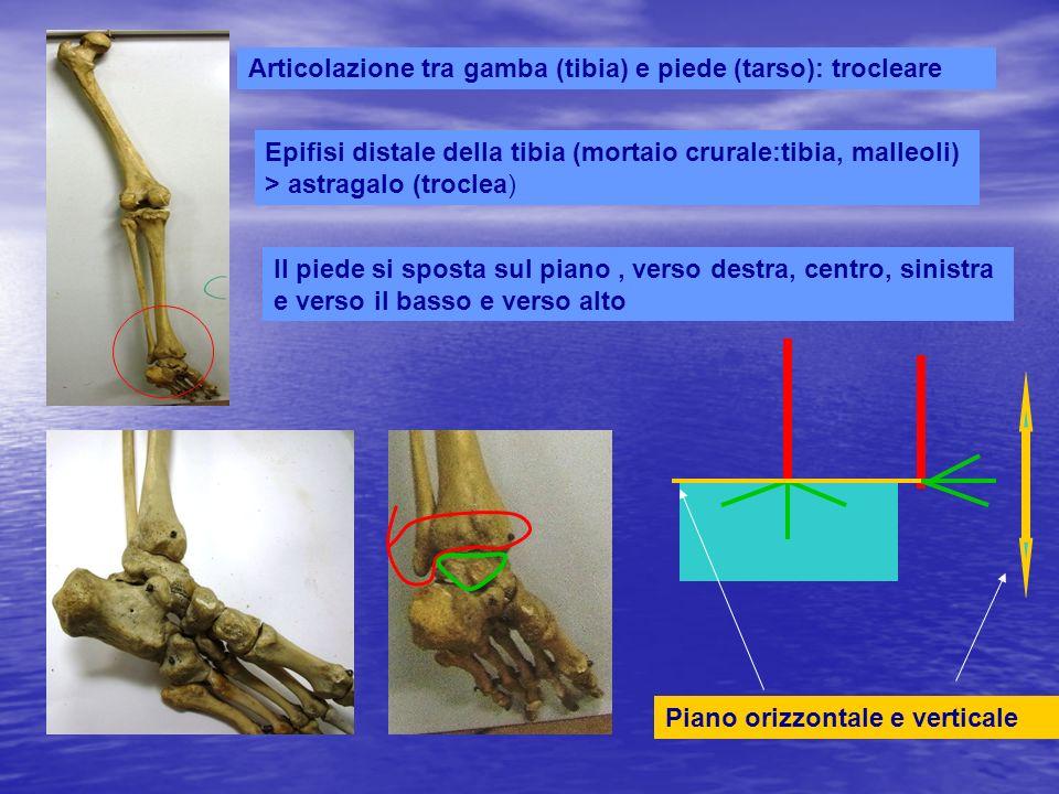 Piede spostato verticalmente Piede spostato a sinistra, destra,sul piano