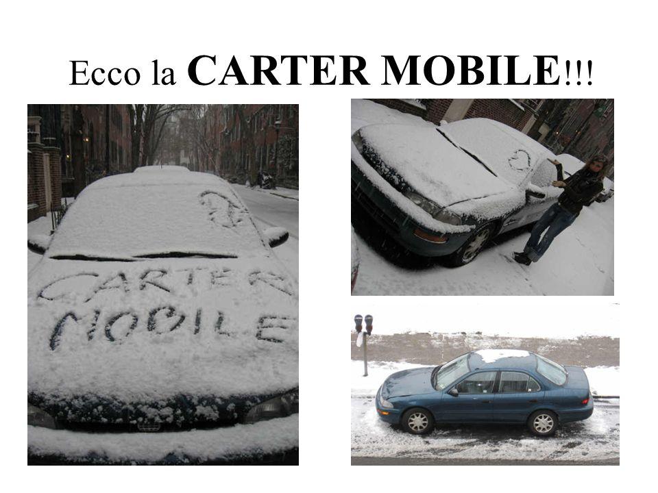 Ecco la CARTER MOBILE !!!