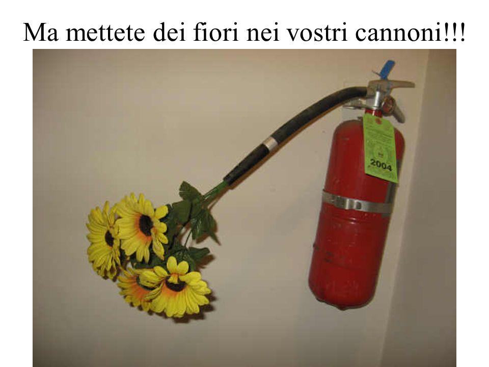 Ma mettete dei fiori nei vostri cannoni!!!