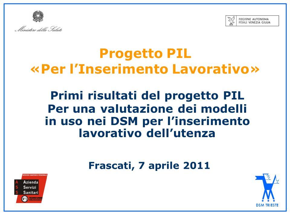 DSM TRIESTE Progetto PIL «Per lInserimento Lavorativo» Primi risultati del progetto PIL Per una valutazione dei modelli in uso nei DSM per linseriment