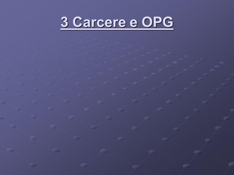 3 Carcere e OPG