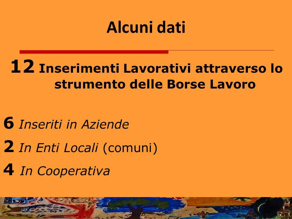 Alcuni dati 12 Inserimenti Lavorativi attraverso lo strumento delle Borse Lavoro 6 Inseriti in Aziende 2 In Enti Locali (comuni) 4 In Cooperativa