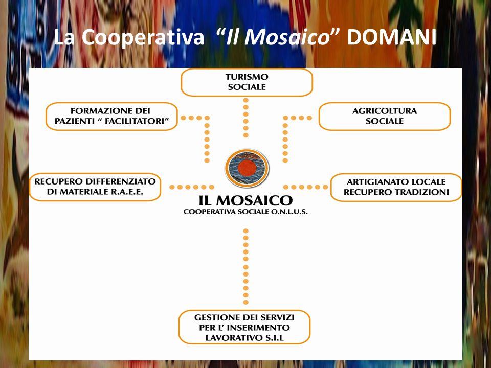 Progetto Sperimentale «Centri per lintegrazione socio-lavorativa» Cooperativa «il Mosaico» Centro Socio Lavorativo Inserimenti Lavorativi Centri per lIntegrazione Socio-Lavorativa di Pazienti Psichiatrici: Il Progetto