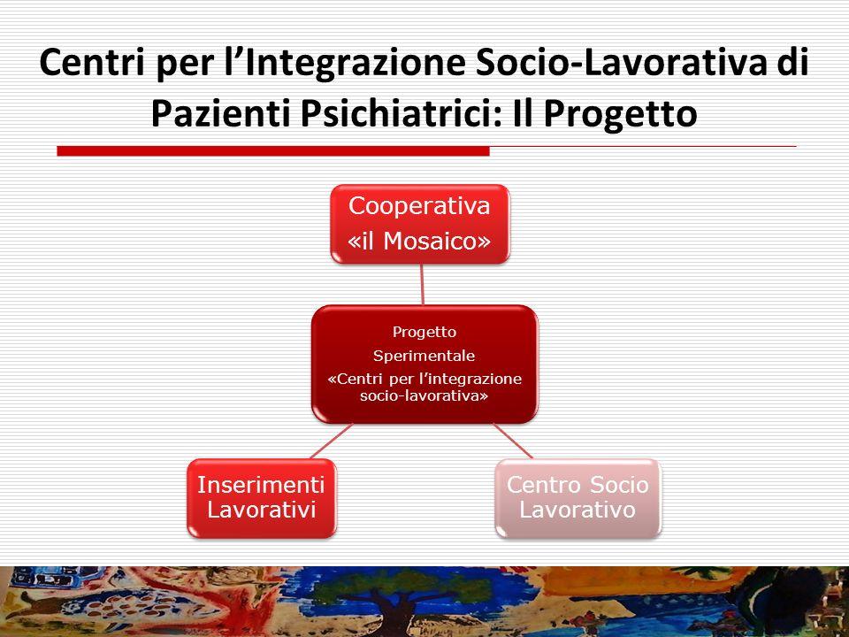 Progetto Sperimentale «Centri per lintegrazione socio-lavorativa» Cooperativa «il Mosaico» Centro Socio Lavorativo Inserimenti Lavorativi Centri per l