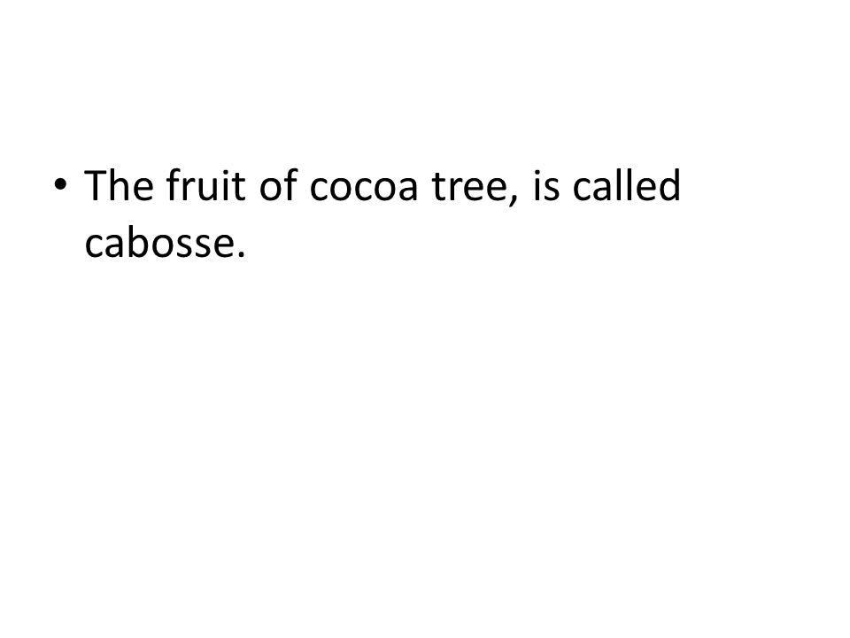 The fruit of cocoa tree, is called cabosse.