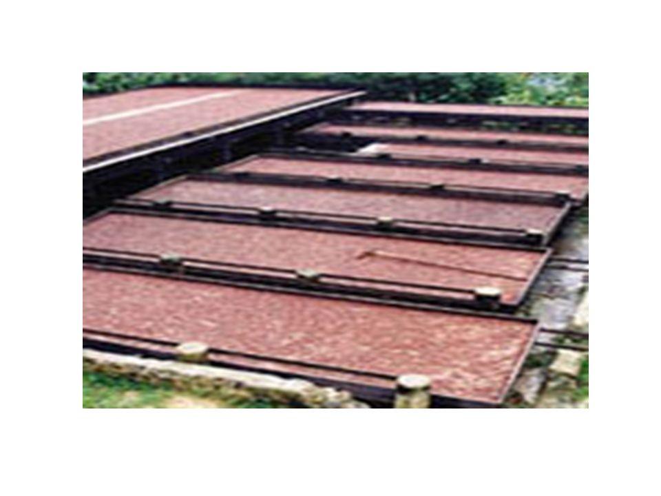 Dopo 2 settimane di fermentazione, le fave vengono poste a seccare al sole su ripiani con tettoie scorrevoli che li riparano dalle piogge, oppure industrialmente in essiccatori ad aria calda