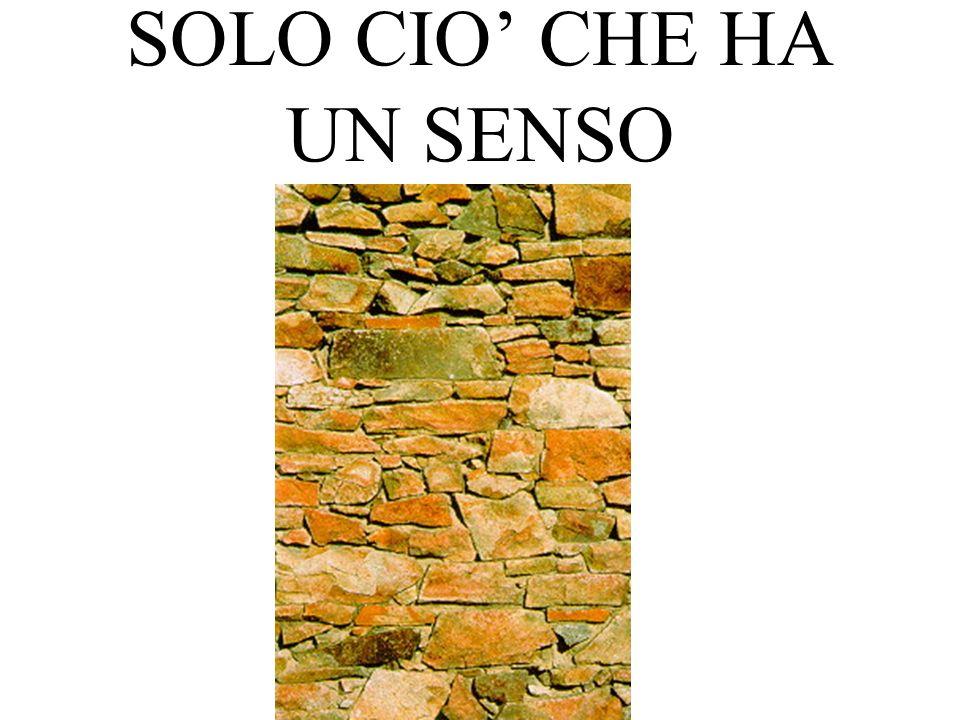 SOLO CIO CHE HA UN SENSO
