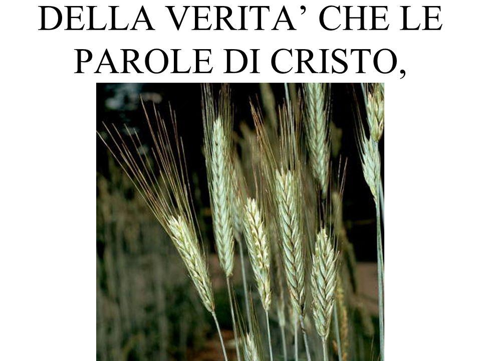 DELLA VERITA CHE LE PAROLE DI CRISTO,