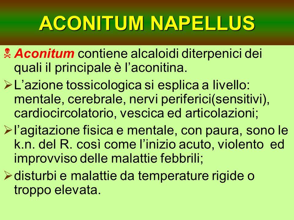 ACONITUM NAPELLUS Aconitum contiene alcaloidi diterpenici dei quali il principale è laconitina. Lazione tossicologica si esplica a livello: mentale, c