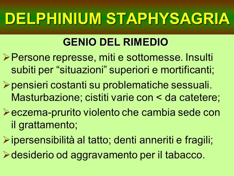 DELPHINIUM STAPHYSAGRIA GENIO DEL RIMEDIO Persone represse, miti e sottomesse. Insulti subiti per situazioni superiori e mortificanti; pensieri costan