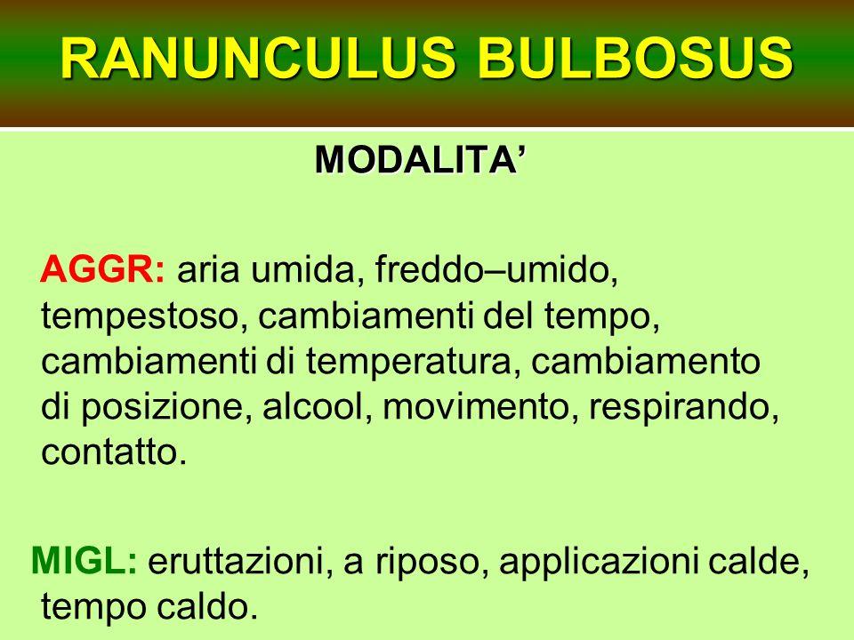 RANUNCULUS BULBOSUS MODALITA MODALITA AGGR: aria umida, freddo–umido, tempestoso, cambiamenti del tempo, cambiamenti di temperatura, cambiamento di po