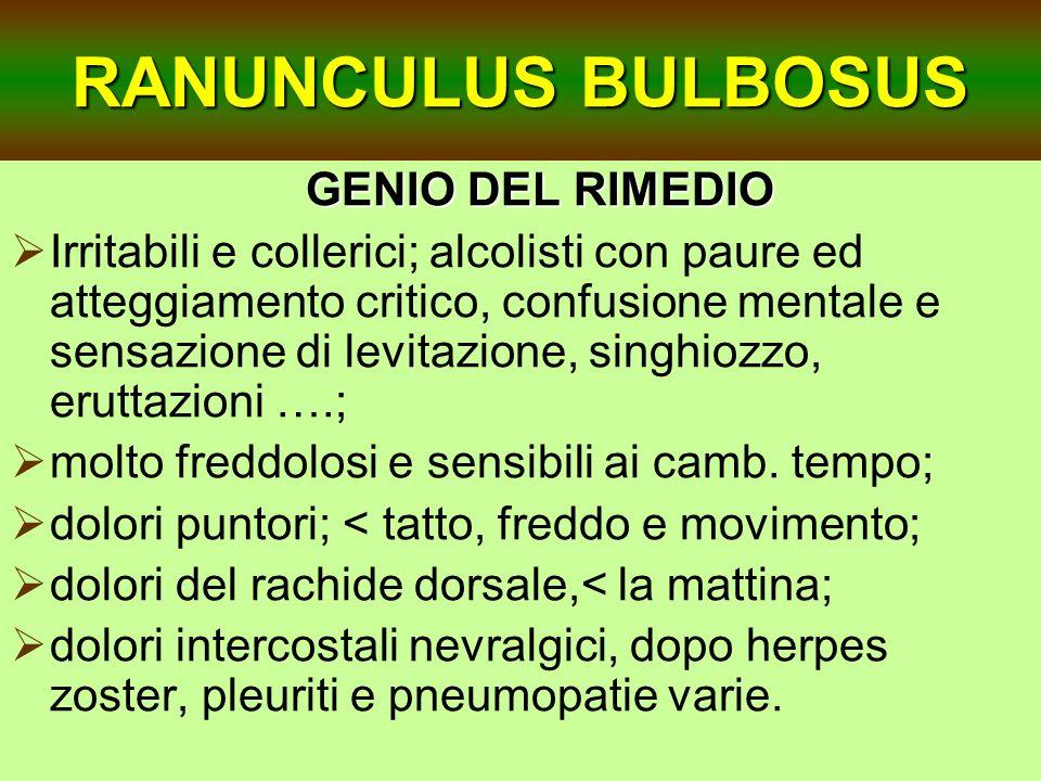 RANUNCULUS BULBOSUS GENIO DEL RIMEDIO GENIO DEL RIMEDIO Irritabili e collerici; alcolisti con paure ed atteggiamento critico, confusione mentale e sen