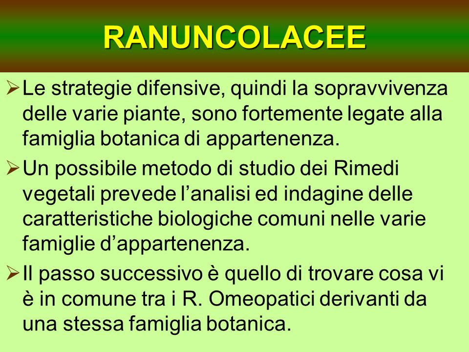 RANUNCOLACEE Le strategie difensive, quindi la sopravvivenza delle varie piante, sono fortemente legate alla famiglia botanica di appartenenza. Un pos