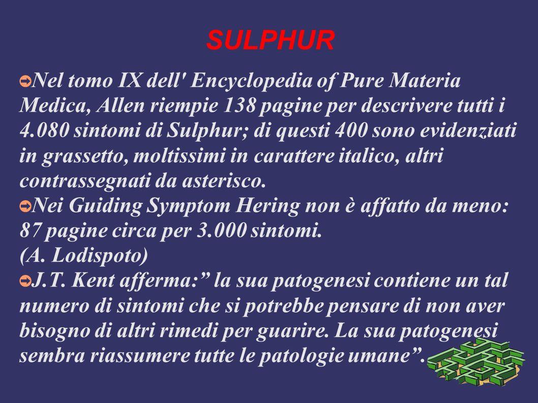 SULPHUR Nel tomo IX dell' Encyclopedia of Pure Materia Medica, Allen riempie 138 pagine per descrivere tutti i 4.080 sintomi di Sulphur; di questi 400